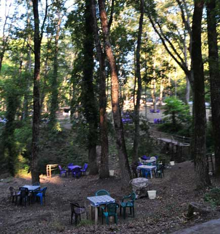 A restaurant in the middle of the forest leading to Kasab